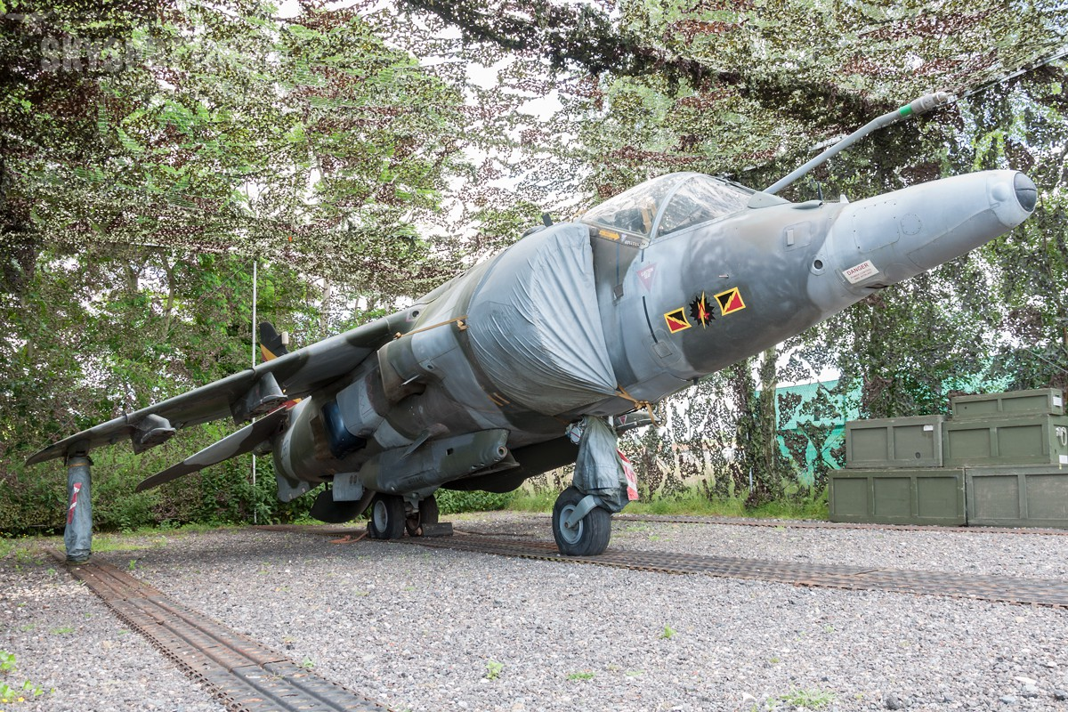 _DSC0051_1-British-Aerospace-Harrier-GR3-RAF-ZD667