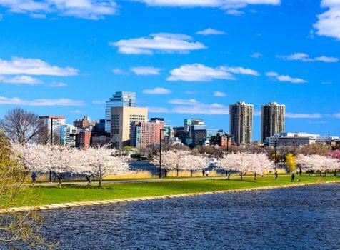 KLM poleci do Bostonu. Trzy razy tygodniowo na pokładzie A330-300 od 31 marca 2019